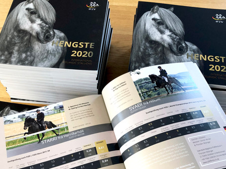 Det Internationale Hingstekatalog 2021 er på trapperne
