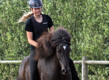 Blog: Heste og hygge