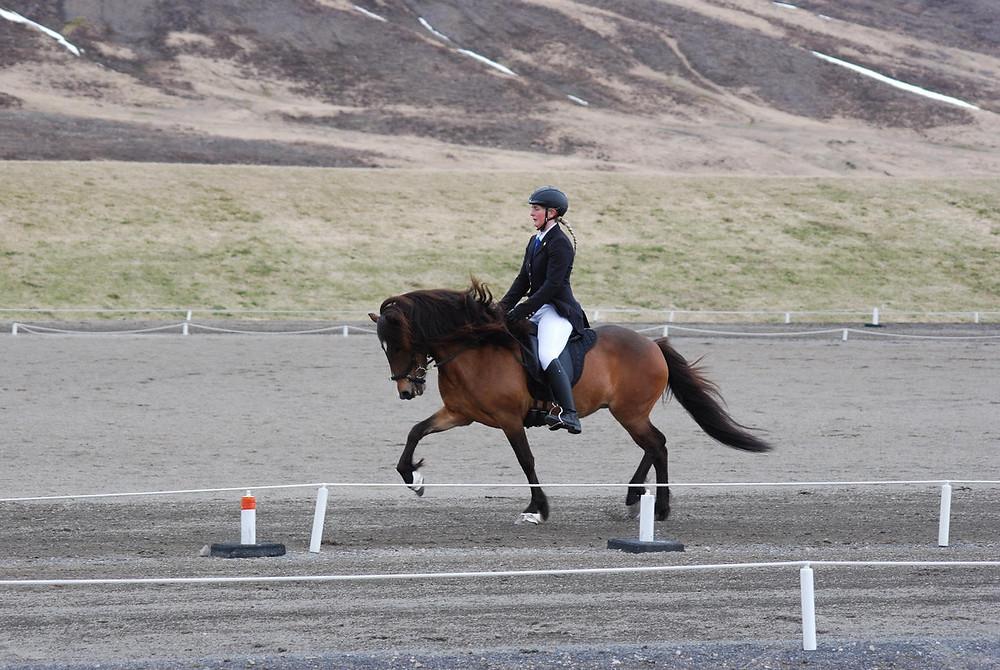 Liva Hvarregaard i trav på islandsk hest på Hólar.