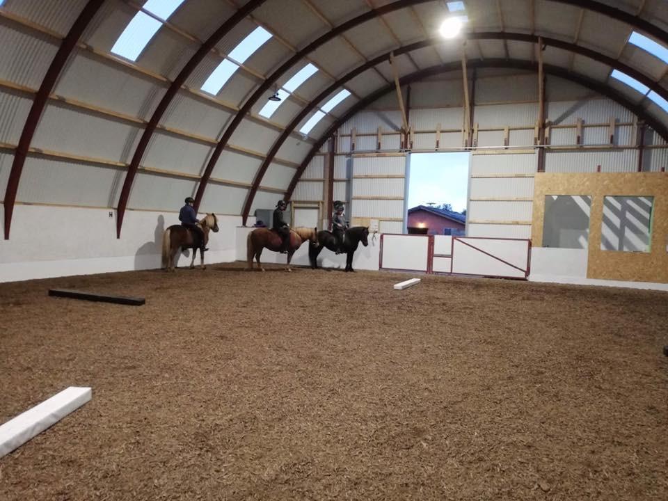 Islandske heste i ridehal