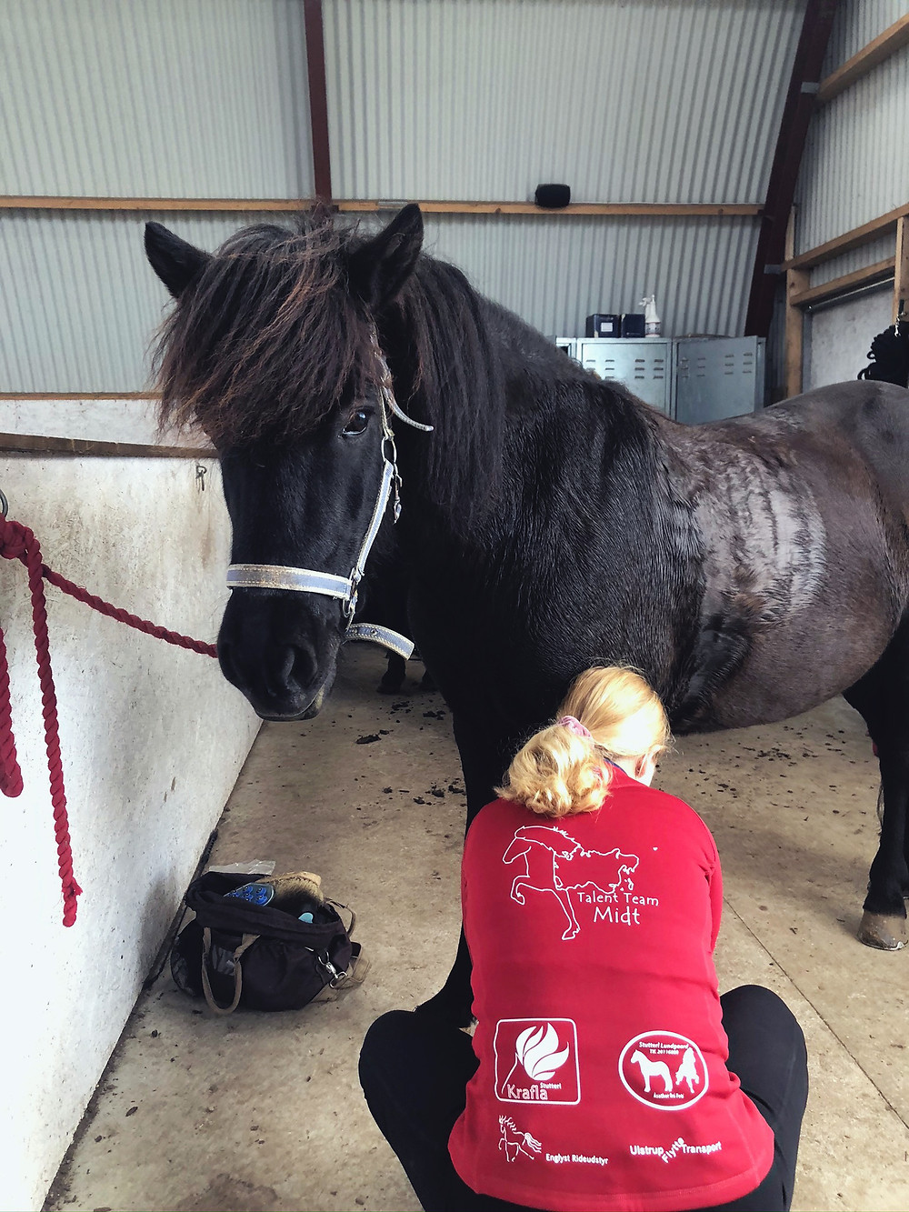 Rytter fra Talent Team Midt på islandsk hest.