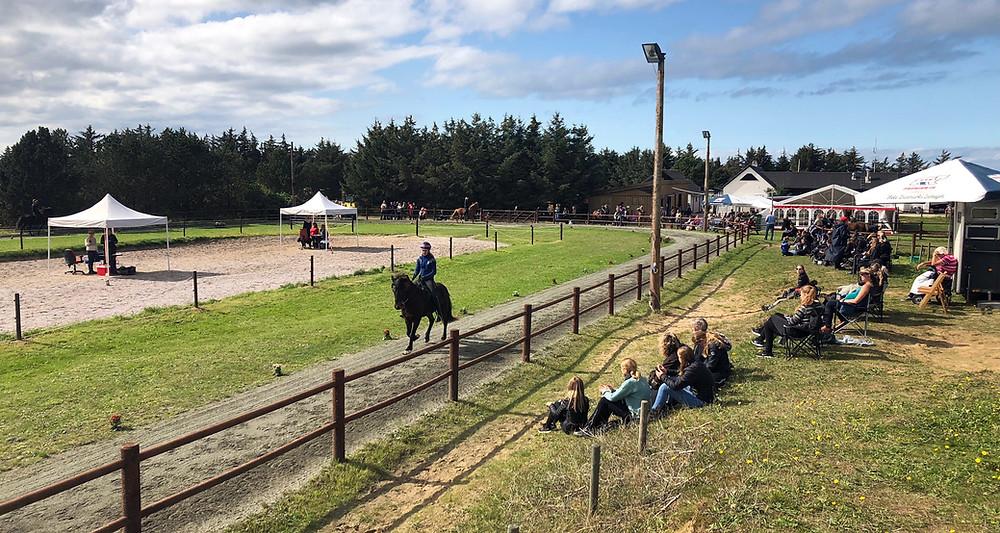 Ridestævne for islandske heste