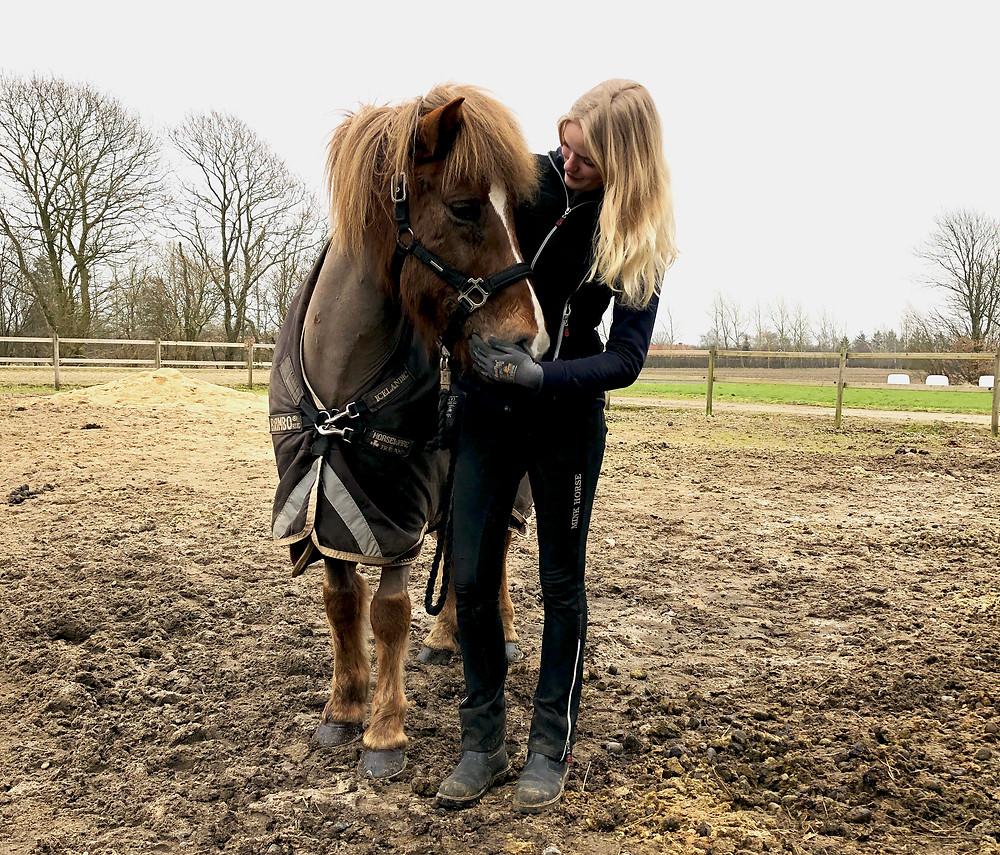 Rytter med islandsk hest