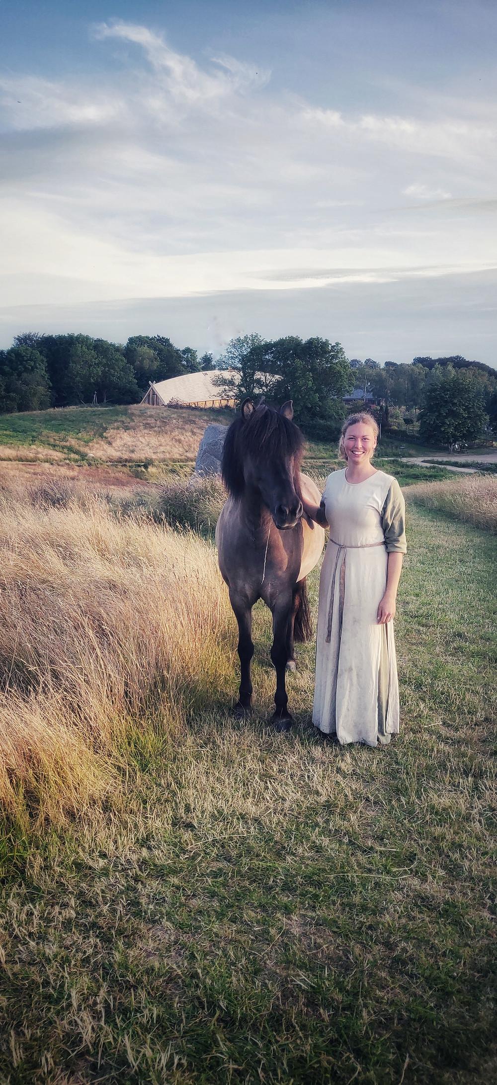 Islandsk hest og rytter på vikingemarked