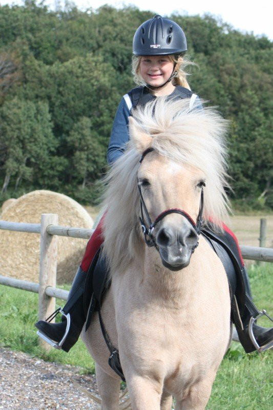 Pige på islandsk hest