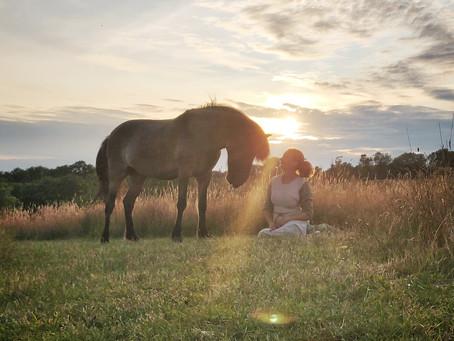 Blog: At være fritidsviking
