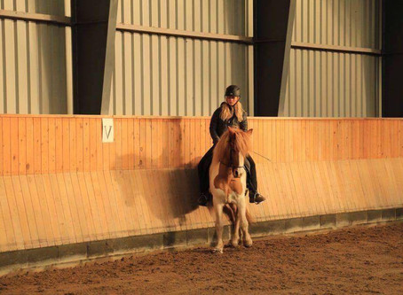 Blog: At træne din hest så den bliver ligeudrettet