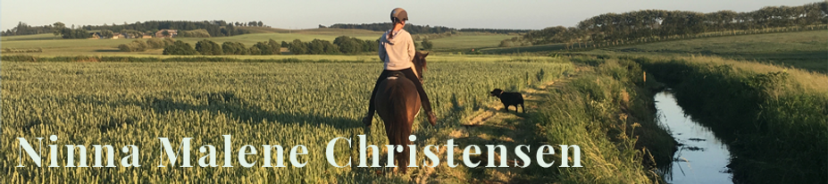 Ninna Malene Christensen Headbanner.png