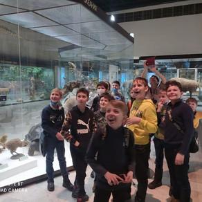 Интерактивные занятия в музее Дарвина