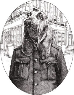 Mr. Bloodhound