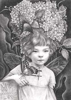 The Lady of the Butterflys