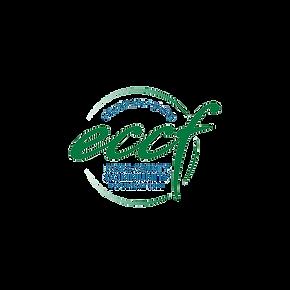 ACT_logos_eccf.png