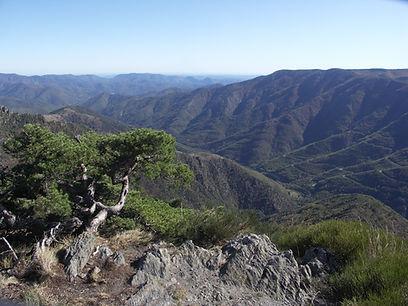 Languedoc. Paysages classés au patrimoine mondial de l'UNESCO