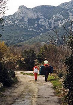 L'âne, compagnon de votre famille motive les enfants en randonnée