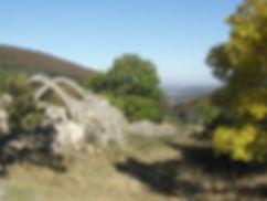 randonnée âne Cévennes Larzac