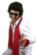 elvisPreleyCover_edited.png