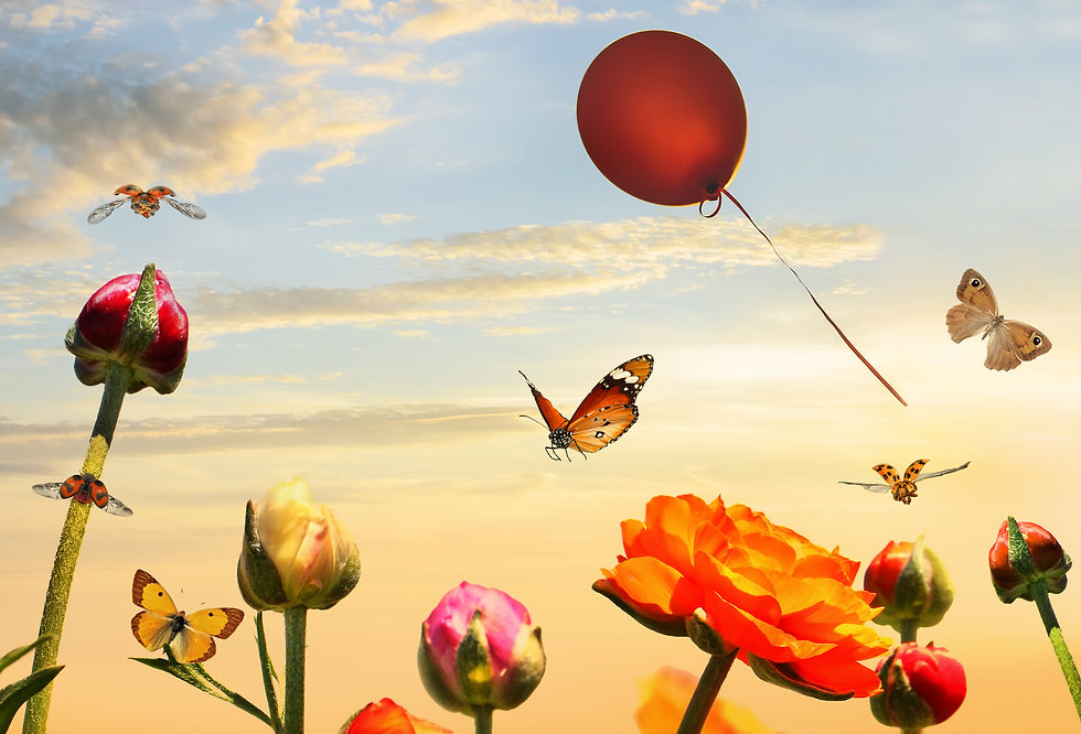 Butterflies fly over colorful garden flo