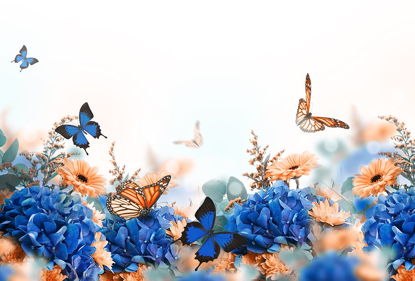 Amazing background with hydrangeas and d
