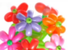 Balloon flower .jpg