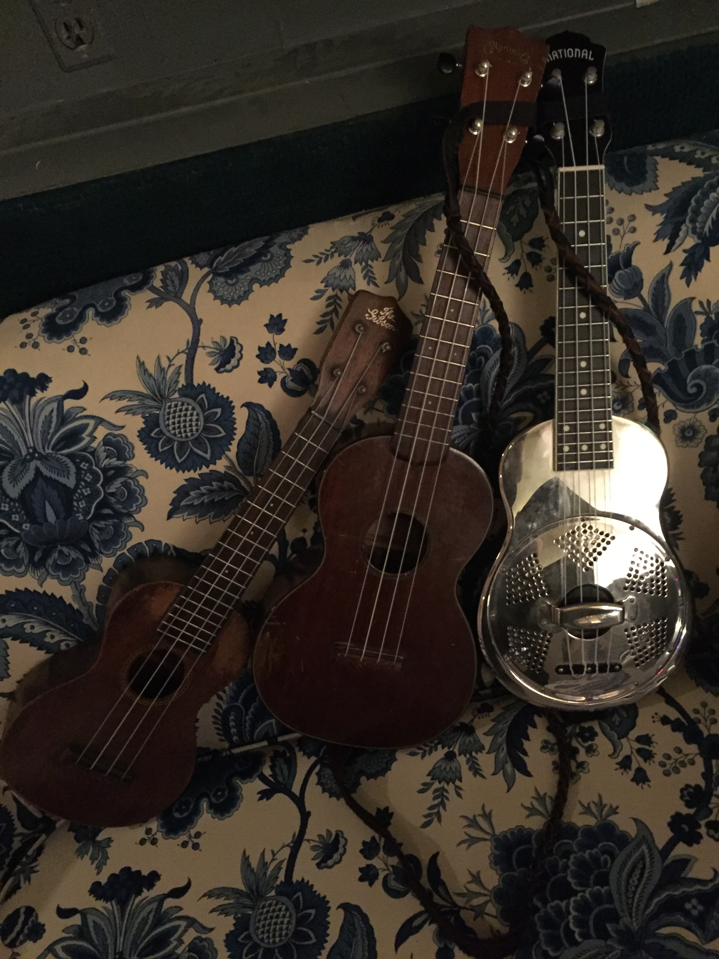 Gibson, Martin, National Ukes