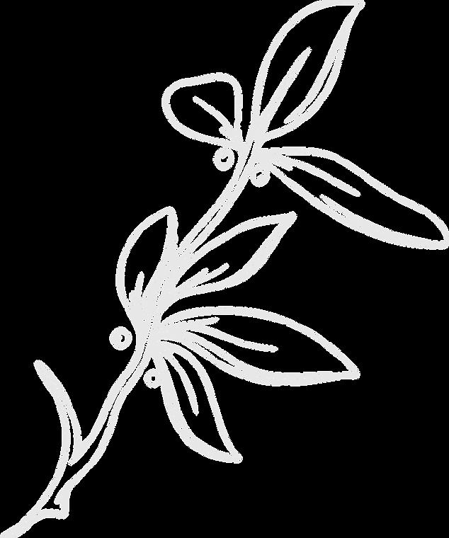 Flower-01_edited.png