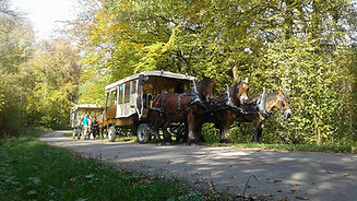 2 chariots.jpg