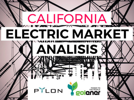 Pylon Network: Memoirs from the wonderland of Californian electricity market.