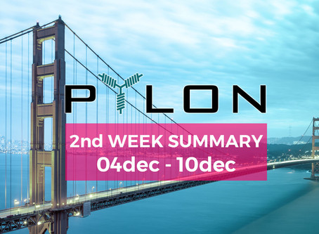 Silicon Valley – Second week summary