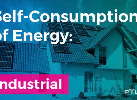 Energy Self-Consumption: Industrial