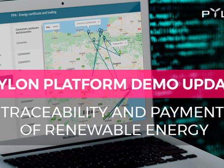 Traceability and payment of renewable energy is now live on Pylon Network's demo page. –