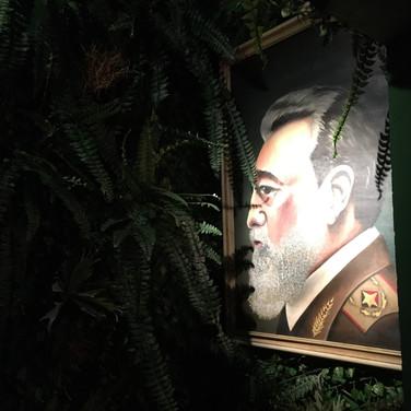 Parede vegetal permanente reforma Rey Castro SP