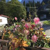 Arranjo com flores de jardim na montanha italiana