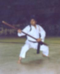 dojos ken usa, karate, kobudo, shigeo nakazato