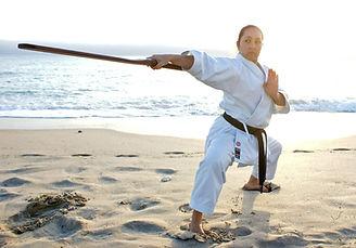 karate, kobudo, dojos ken usa, self defense