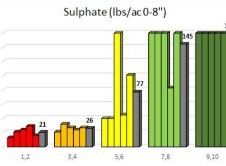 Case Study: Sulphur Soil Testing by Zone