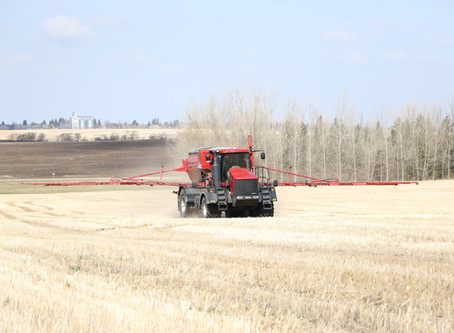 3 Things to Consider Before Applying Sulphur in the Fall