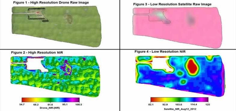 Drone Image, Satellite Image, High Resolution NIR, Low Resolution NIR, Real-Time Biomass Maps