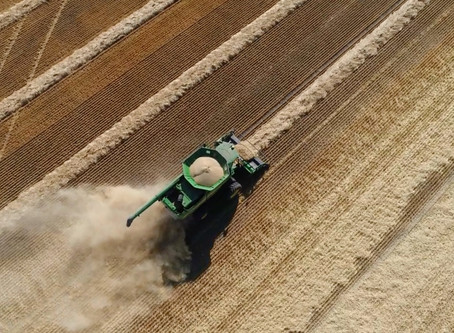 How to Collect Quality Yield Data