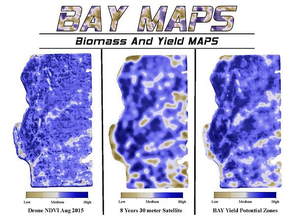 EM38 Map, Veris Map