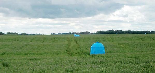 Dome, Alfalfa, Saskatchewan, Dome Maps, CropPro