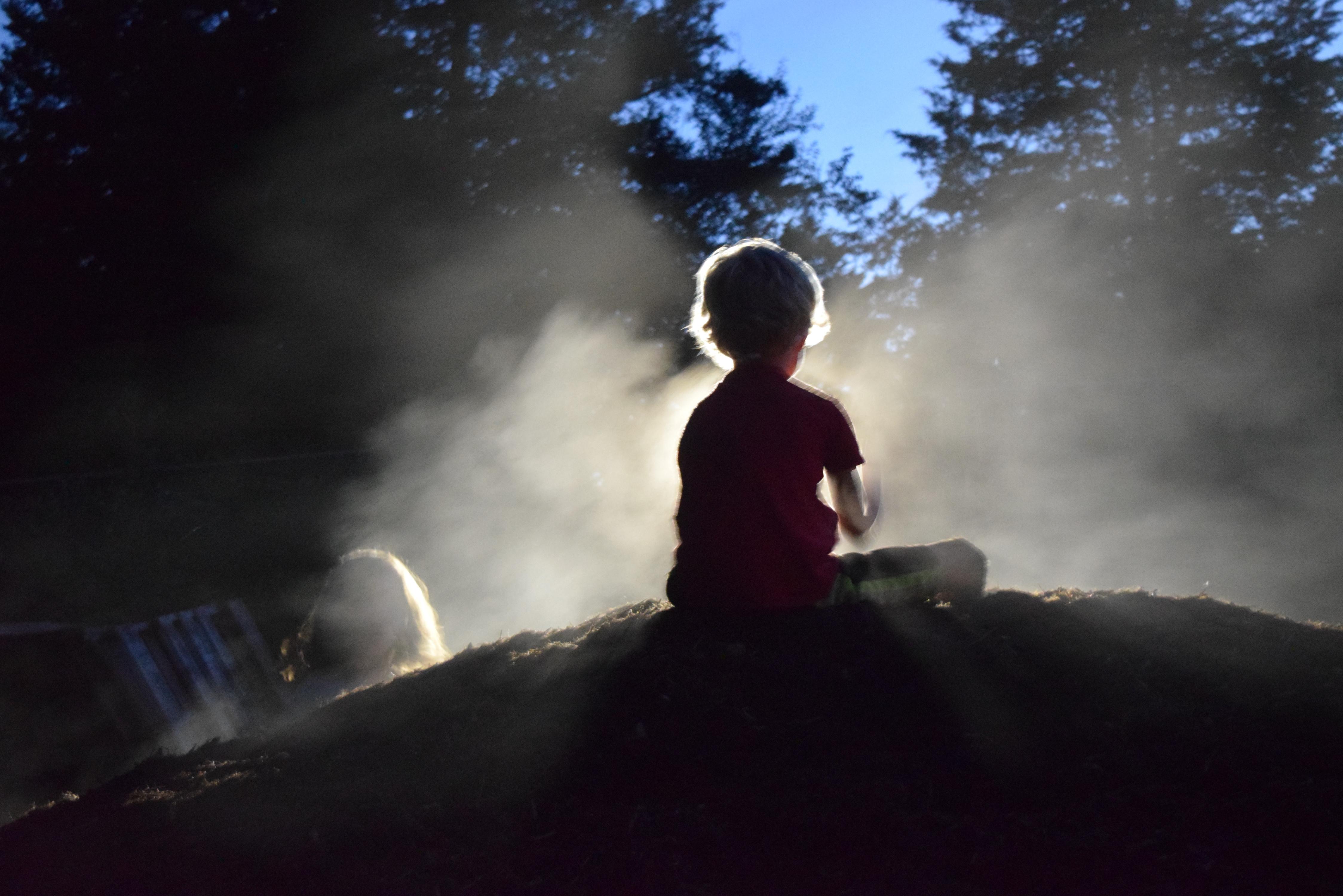 Farmstead New Moon Night (7/10)