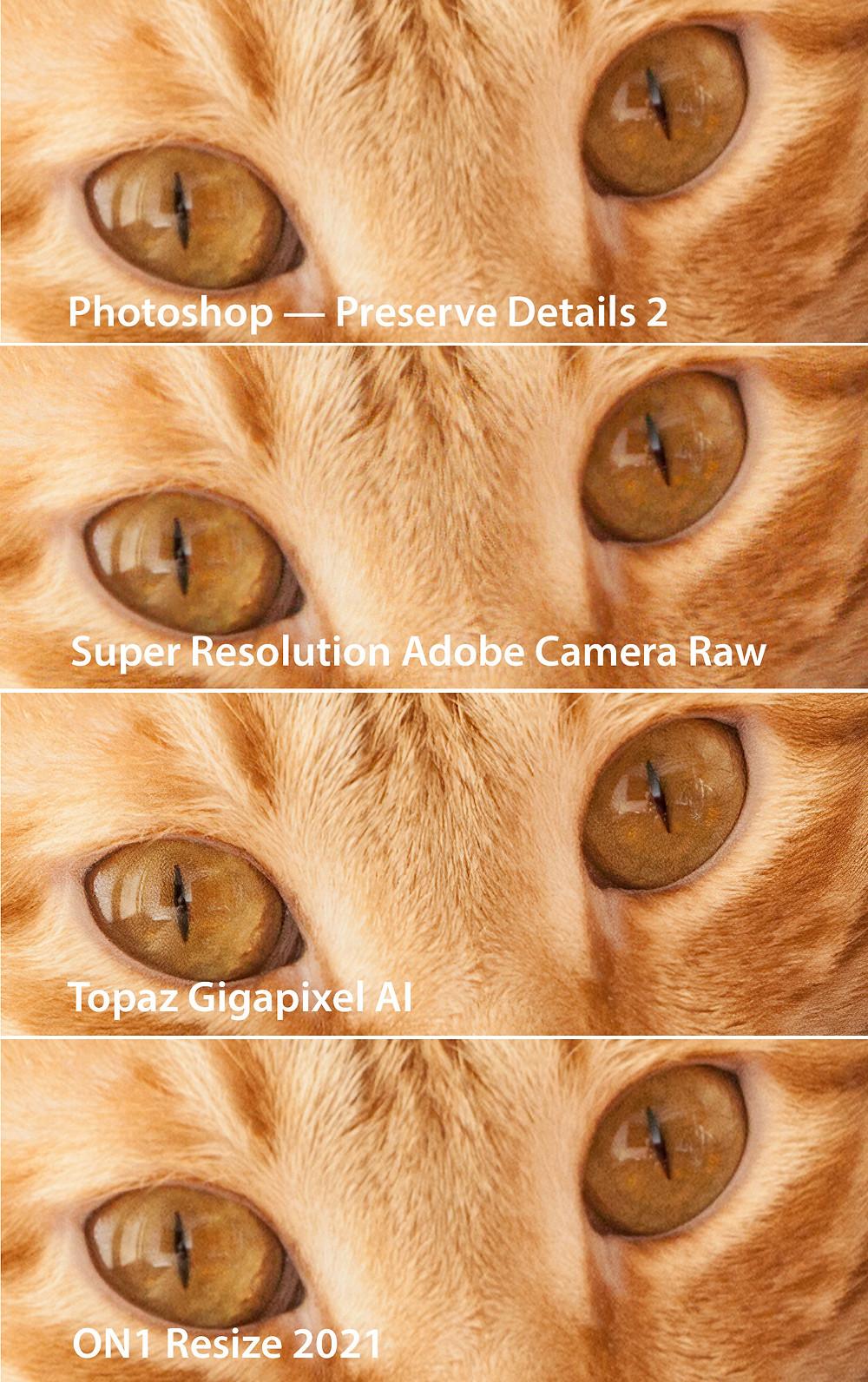 Super Resolution Adobe Camera Raw, Topaz Gigapixel AI, Photoshop — Preserve Details 2, ON1 Resize 2021