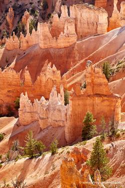 Red rocks, Bryce Canyon