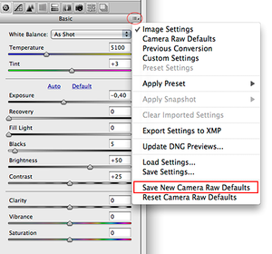 Adobe Camera Raw, Save New Camera Raw Defaults