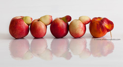 Dedication to Brueghel. Nectarines