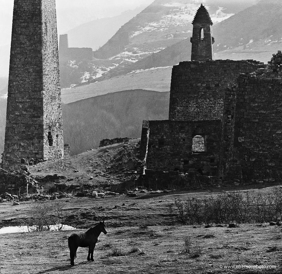 Old ruins. Wild Horse