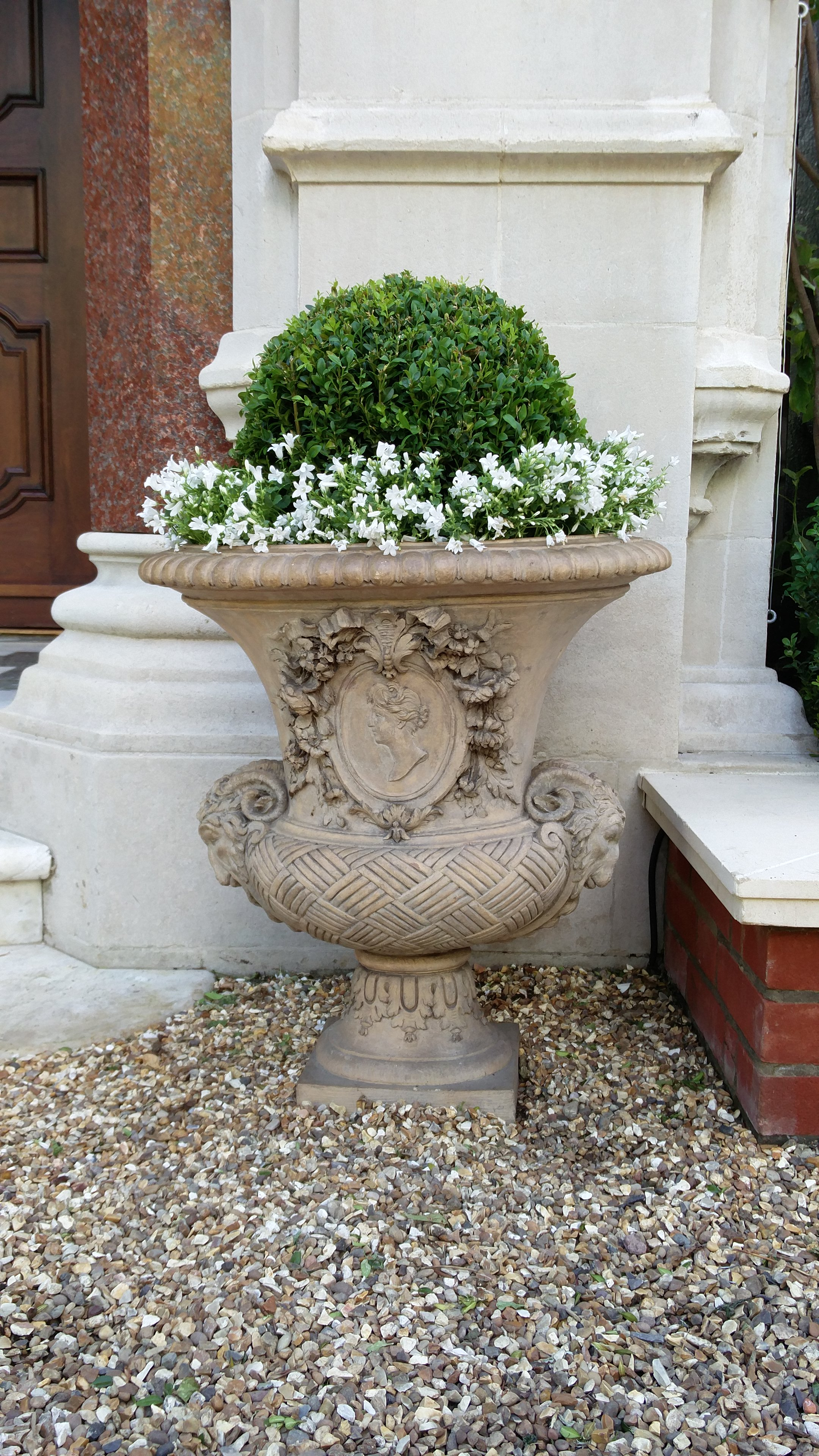 Custom made pot with buxus &