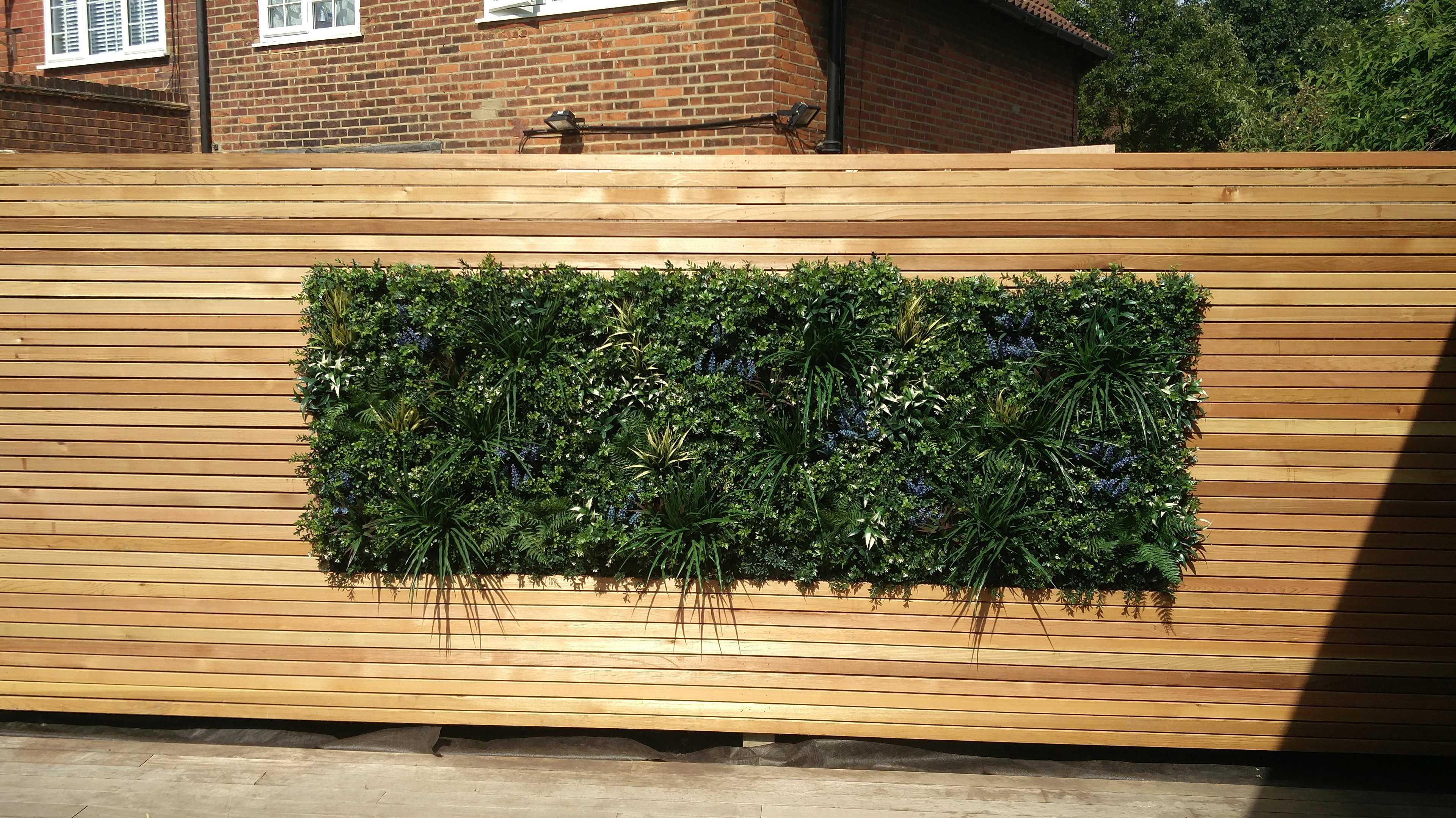cedar & plant wall