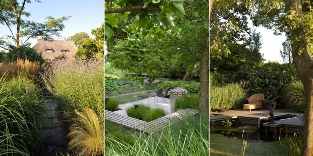 Beispiele für moderne Gräsergestaltung in meinem Garten