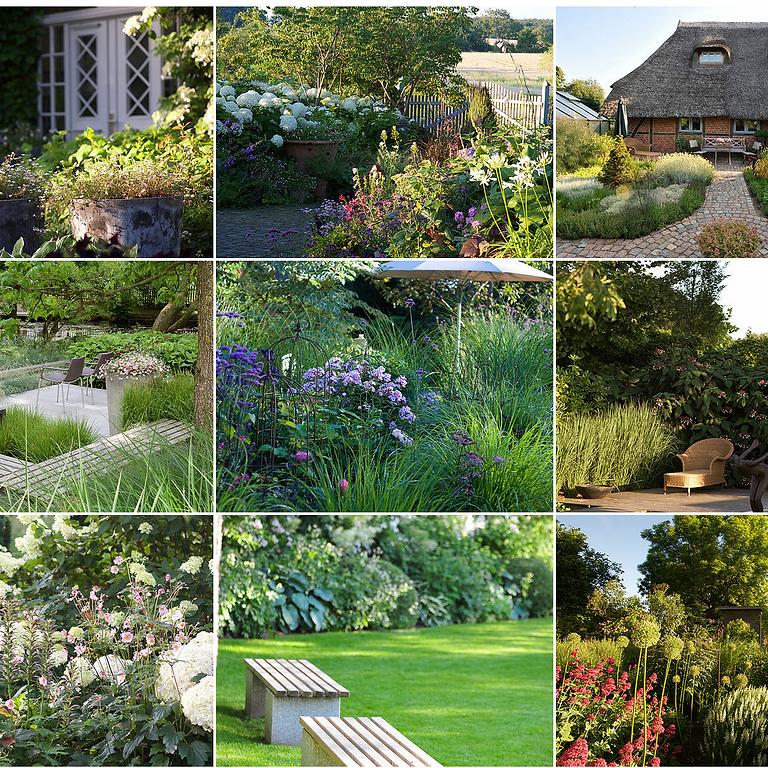 Grundkurs Gartengestaltung